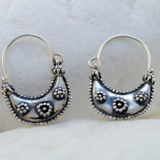 Archaic hook earrings